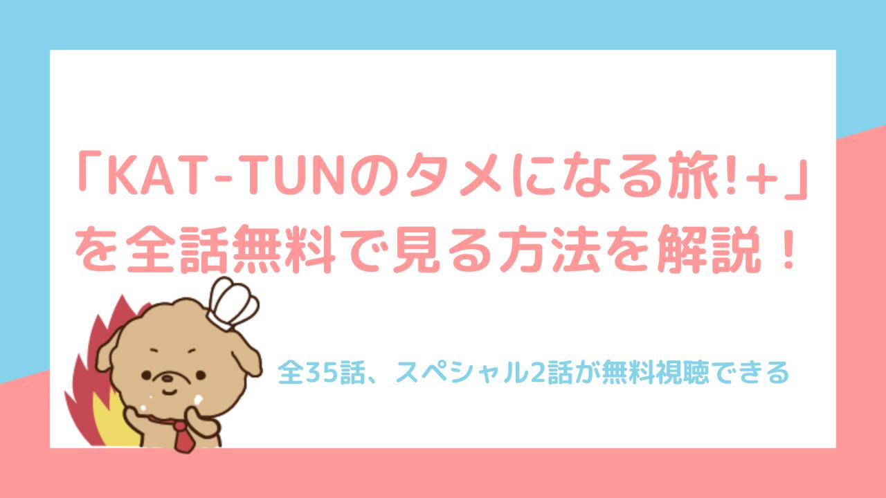 KAT-TUNの「世界一タメになる旅!+」を全話無料で見る!【あらすじ・みどころも】